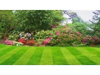 grass cutting and hedge trimming-£15 per hour- bearsden and milngavie area