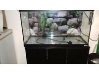 Fish tank with cupboard