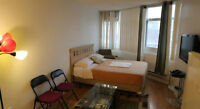FURNISHED BACHELOR APARTMENT IN DOWNTOWN, $545/WEEK