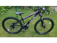 Mountain bike + chain, lights, mudguards,pump