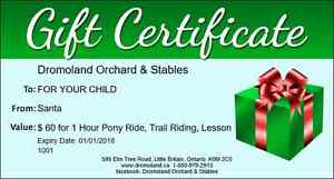 """"""" XMAS GIFT CERTIFICATE """" for PONY RIDES & HORSE TRAIL RIDES"""