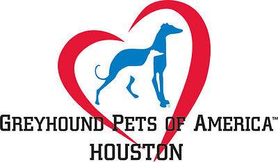 Greyhound Pets of America Houston