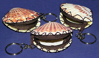 Shell Measures (New Scallop Shell Zippered Purse For Trinkets,Pills,Etc. Measures 2-1/2