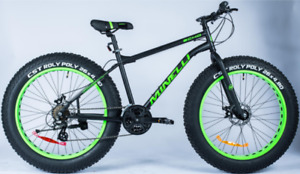 Fat Bike Minelli Echo 2019