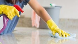 FLEXIBLE DOMESTIC CLEANING WORK