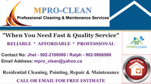 Cleaning, Painting, Repair and Maintenance Services