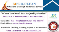 Cleaning, Painting and Repair