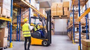 Forklift Driver / Storeman/ Delivery Driver/Furniture Installer