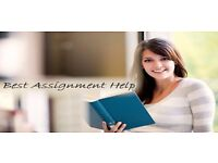 Instant Quality Services for Assignment - Essay - Dissertation