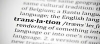Experienced French English Translator