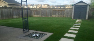 Landscaping / Property Maintenance / Sod Installation Kitchener / Waterloo Kitchener Area image 2