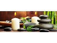 proffessional deep tesue massage therapist