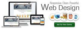 Professional Web Site Design for £199