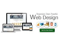 Professional Web Site Design for £199