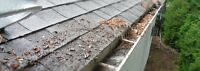 Get your gutters winter ready! $100 eavestrough cleaning/repair
