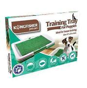 Puppy Training Mats