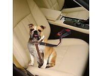 COMSUN Dog Car Seat Belt, 2 Pack Adjustable Length Pet / Cat