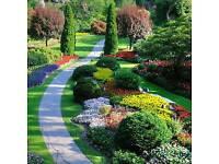 All Aspects Garden Care