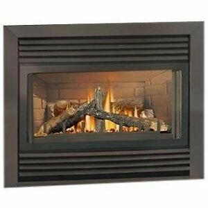 Looking for Napoleon BGD34NT Gas Fireplace