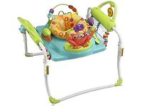 Fisher Price Step and Play Jumperoo.