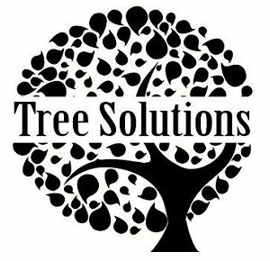 Tree Solutions, specializing in tree removal and other services