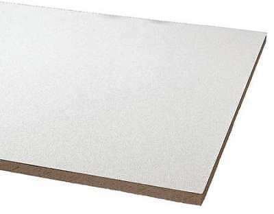 Armstrong 868b Clean Room Ceiling Tile 24 In W X 24 In L 12 Pk 0.55 Nrc