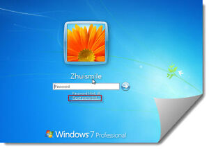 Windows and Apple Mac Password PIN Removal/ Reset Service