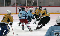 Mens Old-timers 35+ hockey league looking for players and teams