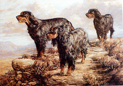 GORDON SETTER BLACK and TAN GUN DOG FINE ART LIMITED EDITION PRINT