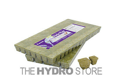 Grodan 1 5  A Ok Starter Plugs Cubes 1 12 50 100 Count   Rockwool Grow Media