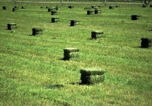 Small square bales and 4x5 round bales