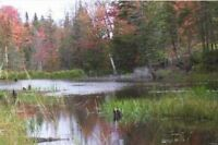 160 Acres in Prince Township! New Price!