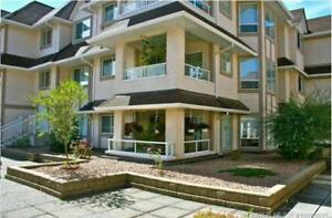 Bright and Beautiful Two Bedroom Two Bath Condo in Glenmore.