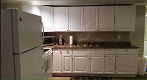 2 bedroom basement apartment fully furnished