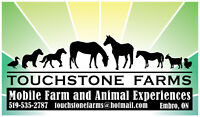 Petting Zoo, Mobile Farm, Party and Events!