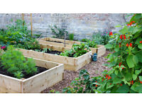 Garden Maintenance, Clearance, Affordable, Jack and Tom's Garden Works