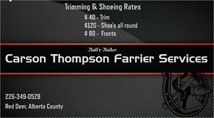 Farrier accepting new clients
