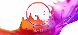 WANTED - Sky Q TV Mini Box ( with remote and power cable ) £30