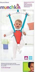 Munchkin Baby Door Swing