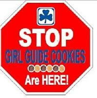 Chocolatey Mint Girl Guide Cookies for sale
