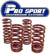 Corsa C 40mm lowering Springs