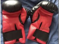 2xboxing gloves