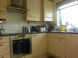 Modern 3 bedroom in hither green