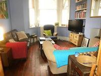 Garden Flat - Crewdson road - onedouble bedroom