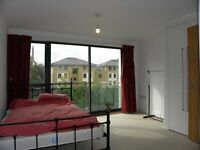 Large Spacious,3 Double bed apartment