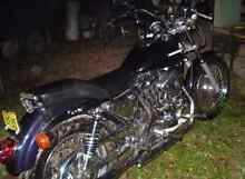 Harley Davidson Custom Sportster 1200 West Gladstone Gladstone City Preview