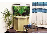 Aqua Mode 900 fish tank £50