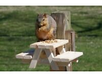 Squirrel Picnic Table 100% recycled timber