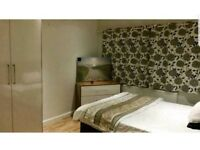 Double Room (Extra Large)