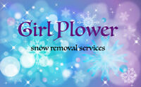 Commercial & Residential Snow Removal Services